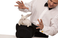 Magician with a rabbit. Man dressed as a magician conjuring with a rabbit in a top hat isolated over a white background royalty free stock photography