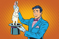 Magician trick rabbit Royalty Free Stock Photo