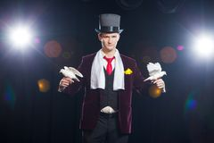 The magician with a two flying white Doves. on a black background.  Stock Photo
