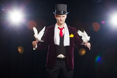 The magician with a two flying white Doves. on a black background.  royalty free stock images