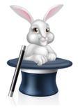 Magicians Bunny Rabbit Royalty Free Stock Photos