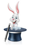 Magicians Hat Bunny White Rabbit Stock Photo