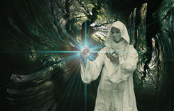 Magicien blanc illustration libre de droits