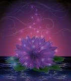 Magiczna lotosowego kwiatu karta Zdjęcia Royalty Free