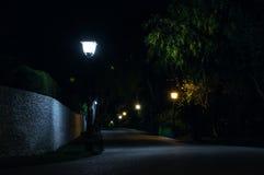 Magiczna uliczna noc Zdjęcia Royalty Free