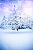 Magiczna zima Fotografia Royalty Free