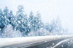 Magiczna zimy droga, śnieg zakrywał drzewa i spada śnieg zdjęcia royalty free