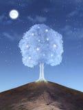 magiczne drzewo Obraz Royalty Free