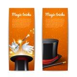 Magiczni sztandary Ustawiający Fotografia Royalty Free