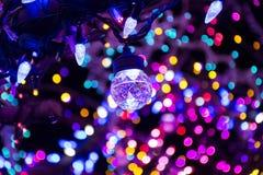 Magiczny Drzewny oświetlenie, Kolumbia MO Zdjęcia Stock