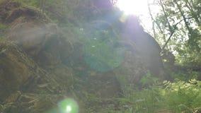 Magiczny jar blisko halnej rzeki zbiory