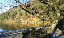 Magiczny jezioro Obraz Royalty Free