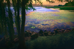 Magiczny jezioro Fotografia Royalty Free