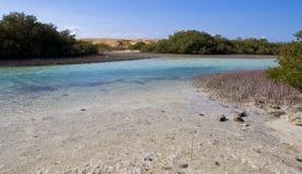 Magiczny jezioro w Egipt obraz royalty free
