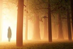 Magiczny Lasowy duch ilustracji
