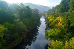 Magiczny lato ranku wschód słońca nad głębokim mgłowym lasem wzdłuż rzeki Pierwszy promienie słońce przez mgły i drzew na skłonac zdjęcia royalty free