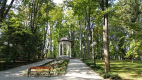 Magiczny miejsce gdzieś w parku obrazy royalty free