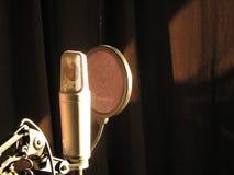 Magiczny mikrofon Fotografia Stock