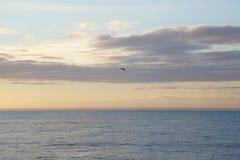 Magiczny ocean nadmiar atlantyckiego wschód słońca Ranek Fala kipiel obraz stock