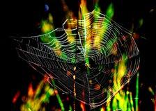 Magiczny pająk sieci tło zdjęcia stock