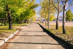 Magiczny ranek z powstającym słońcem tworzy sztukę światło w alei miasta parku Obrazy Royalty Free