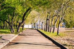 Magiczny ranek z powstającym słońcem tworzy sztukę światło w alei miasta parku II Zdjęcie Stock