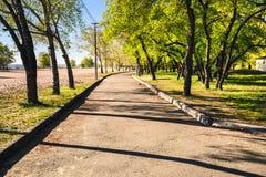 Magiczny ranek z powstającym słońcem tworzy sztukę światło w alei miasta parku iii Fotografia Royalty Free