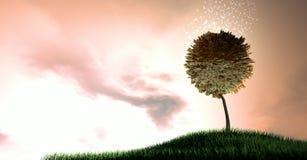 Magiczny skraju pieniądze drzewo Fotografia Stock