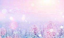 Magiczny zima krajobraz, tło z niektóre miękką częścią podkreśla a Fotografia Stock