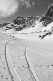 Magie d'hiver photos libres de droits
