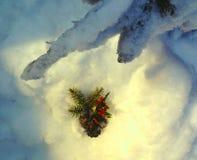 Magie de Noël, décoration dans la neige image stock