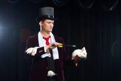 Magier mit Kaninchen, Jongleurmann, lustige Person, schwarze Magie, Illusion auf einem schwarzen Hintergrund stockfotografie