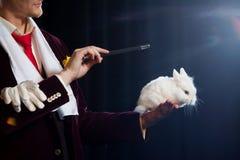 Magier mit Kaninchen, Jongleurmann, lustige Person, schwarze Magie, Illusion auf einem schwarzen Hintergrund lizenzfreie stockfotografie