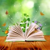 Magii książka