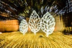 Magii parkï ¼ Œzoom dowodzony oświetleniowy strzał Zdjęcia Royalty Free