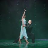 Magin av förälskelse-flamingo dans-Österrike dansen för värld Royaltyfri Fotografi