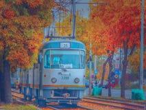 Magin av hösten i Bucharest på spårvagnlinje 25 Royaltyfri Foto