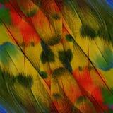 Maginificent del fondo amarillo y verde rojo del Macaw del escarlata Foto de archivo