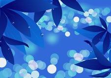 Magisch blauw blad Royalty-vrije Stock Foto's