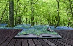 Magisch boek dat met inhoud achtergrond morst Stock Afbeeldingen
