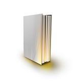 Magisch boek met magisch licht Stock Foto