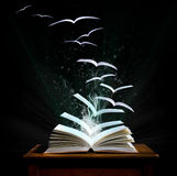 Magisch boek met pagina's die in vogels omzetten Stock Foto