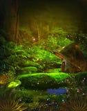 Magisch bos Stock Foto's