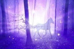 Magisch bos met paard royalty-vrije stock afbeelding