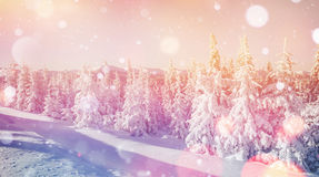 Magisch de winterlandschap, achtergrond met sommige zachte hoogtepunten a Stock Afbeeldingen