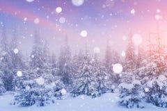 Magisch de winterlandschap, achtergrond met sommige zachte hoogtepunten a Stock Foto's