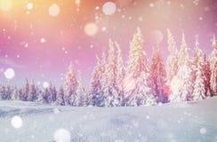 Magisch de winterlandschap, achtergrond met sommige zachte hoogtepunten a Stock Foto