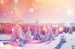 Magisch de winterlandschap, achtergrond met sommige zachte hoogtepunten a Royalty-vrije Stock Fotografie