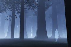 Magisch Forest Ghost 3 royalty-vrije illustratie