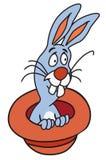 Magisch hoed en konijn Stock Afbeelding